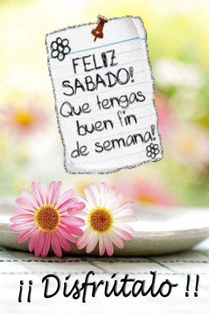 Feliz Sabado Frases Graciosas Pinterest Feliz Sabado Sabado