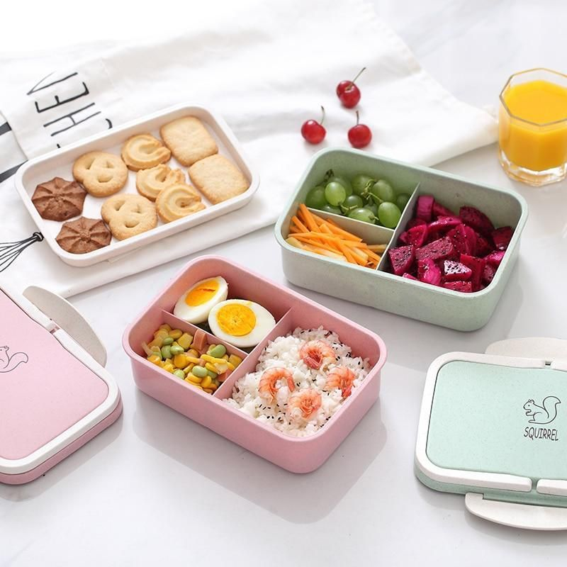 Squirrel Pastel Bento Box Microwavable Lunch Lunch Box Recipes