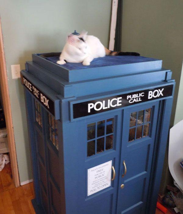 DIY Tardis Cat Playhouse