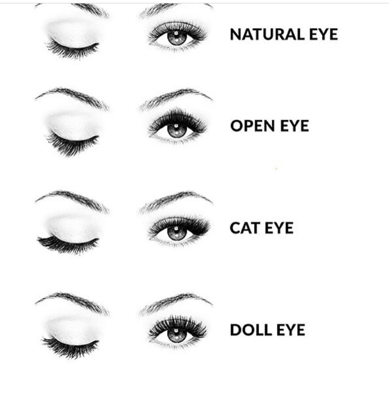 Diff style diagram of eyes illustration of wiring diagram makeup artist https pinterest com makeupartist4ever what rh pinterest com diagram of eye aqueous humor nose diagram ccuart Images