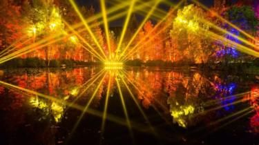 Enchanted Forest Light Show Launched