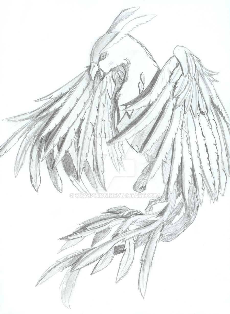Perfecto Lindo Phoenix Para Colorear Elaboración - Enmarcado Para ...