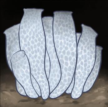 Venus' flower basket (Euplectella aspergillum) is a sponge