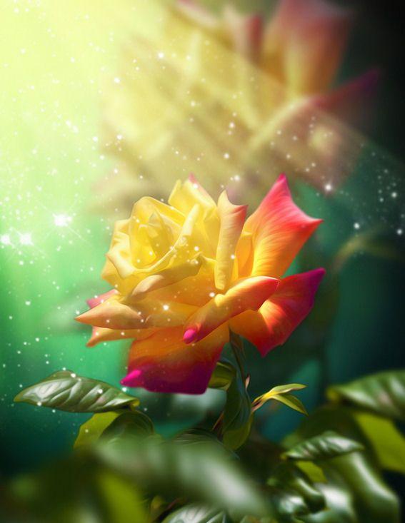 Flores mas hermosas del mundo imagui pinturas - Flores mas bonitas ...