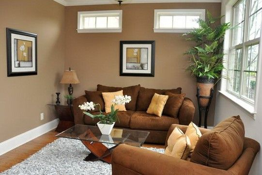 incredible living room wall color | Wall Colors for Small Rooms to make it Spacious : Brown ...