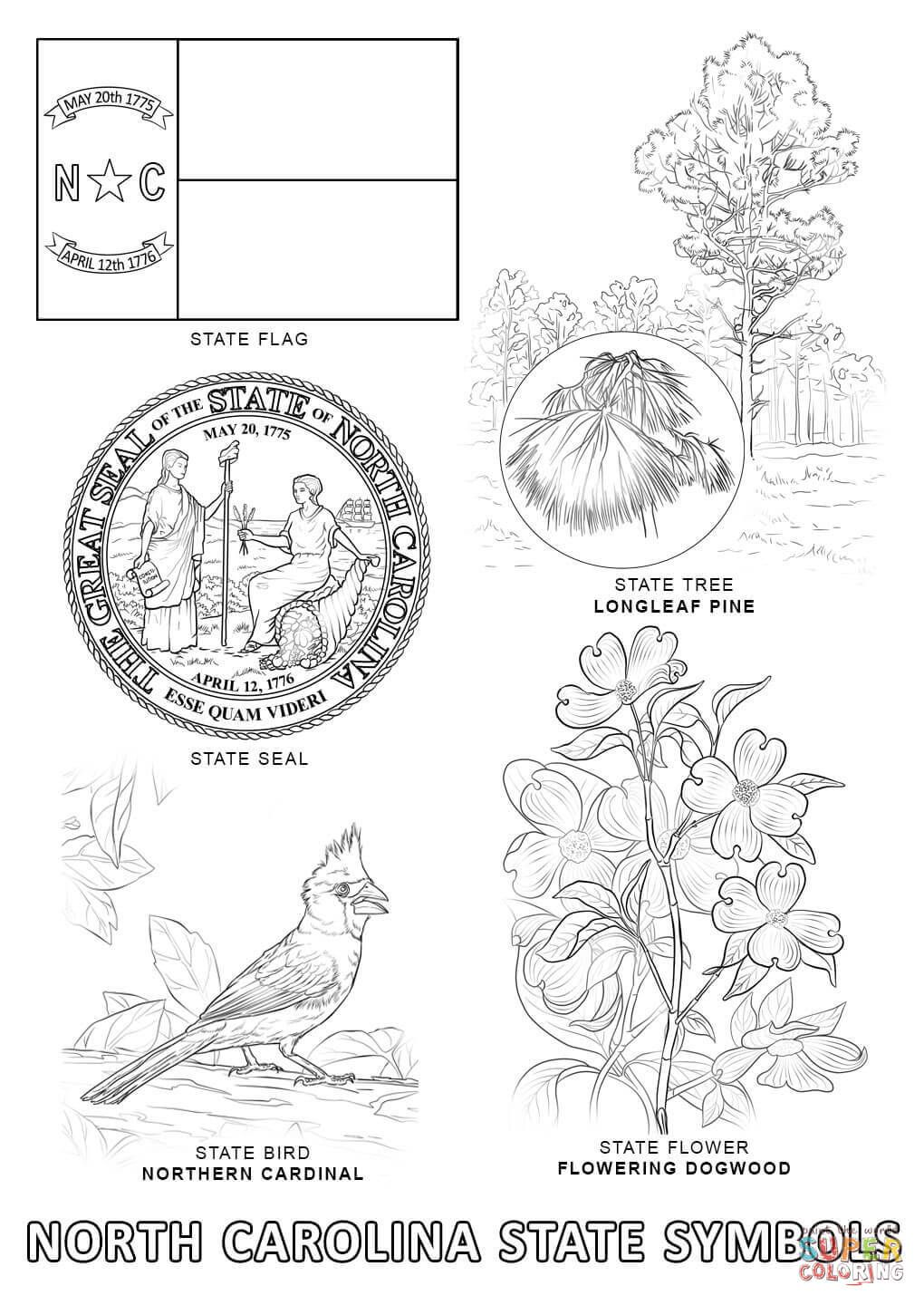 North Carolina State Symbols Coloring Page Free Printable