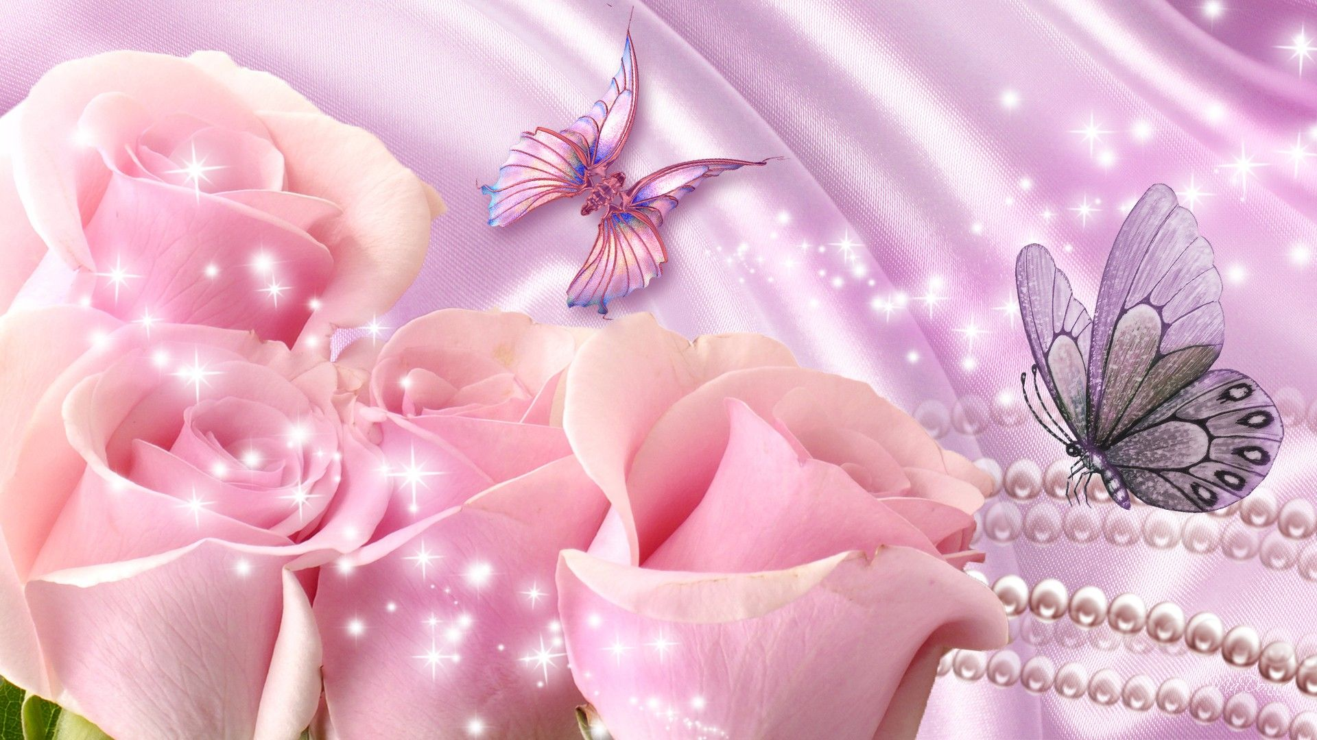 Butterflies With Pink Rose | Pink rose pictures