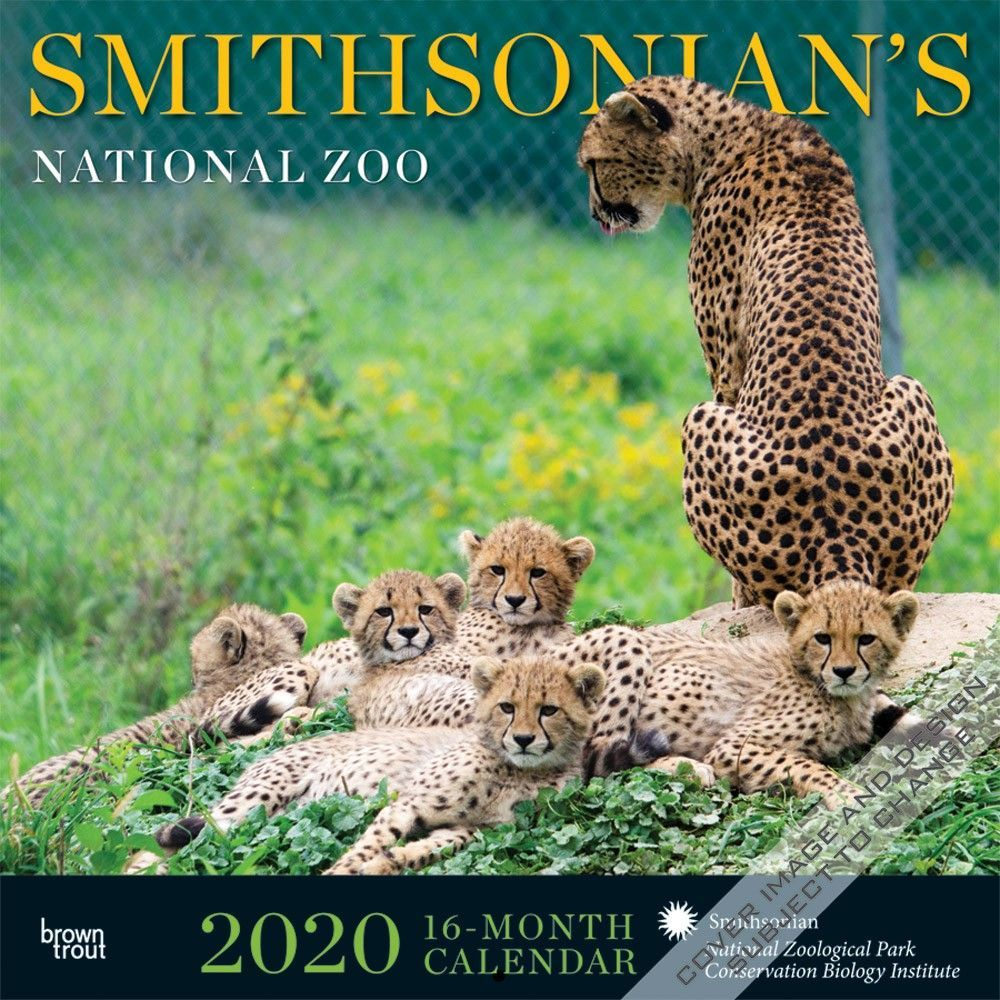 Smithsonian's National Zoo 2020 Wall Calendar provides an