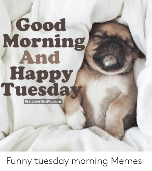 Pin by Radar's Mom on Tuesday Tuesday quotes good