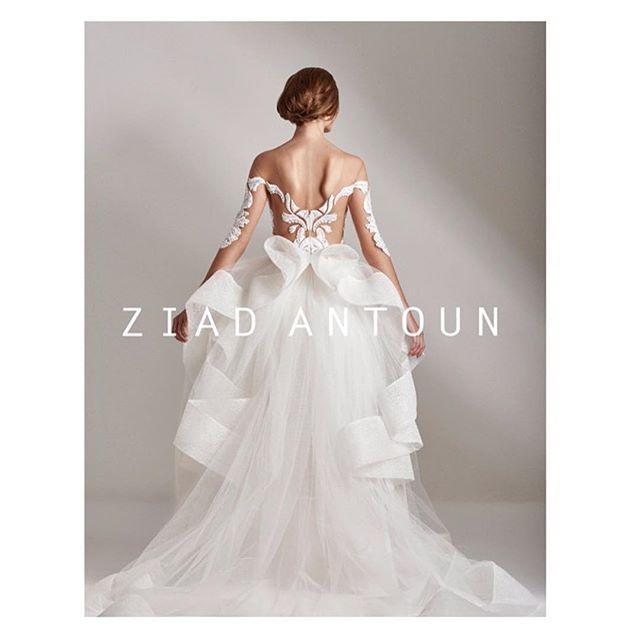 Ziad Antoun