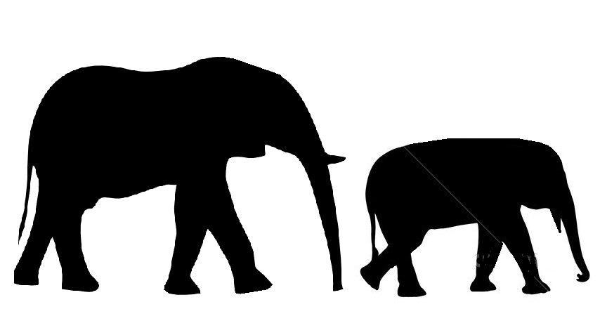 Free Elephant Outline Pictures Clipartix Elephant Outline Indian Elephant Drawing Elephant Drawing