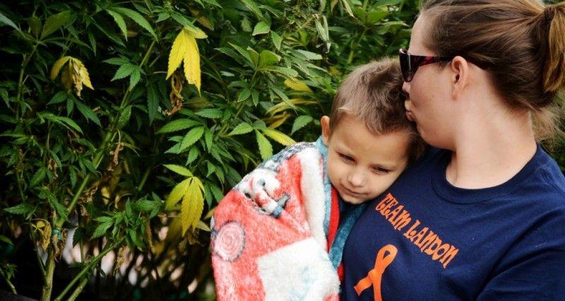 医師から余命48時間を宣告された3歳の少年が、カンナビスオイルでほぼ完治Cannabis Oil Cures 3 Year Old Boy Of Cancer…