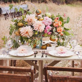 Beautiful picnic out