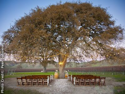 Cass Winery And Vineyard Paso Robles Central Coast Wine Country Wedding Location 93446 California VenuesCalifornia