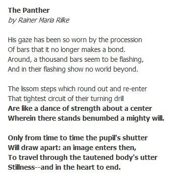 Rainer Maria Rilke Panther The Panther Poem