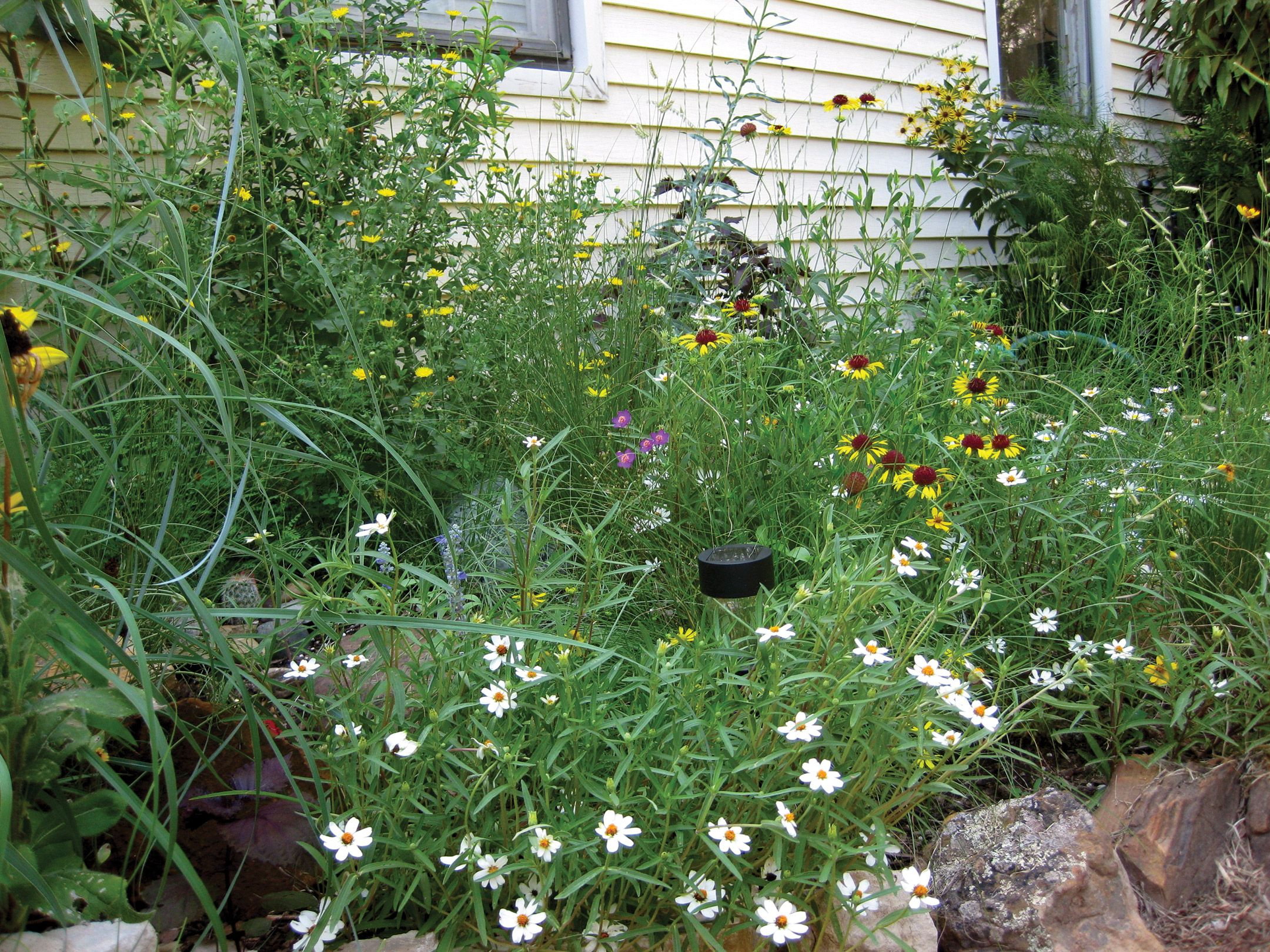 Green Gardening For All State By Enewsletter Web Articles