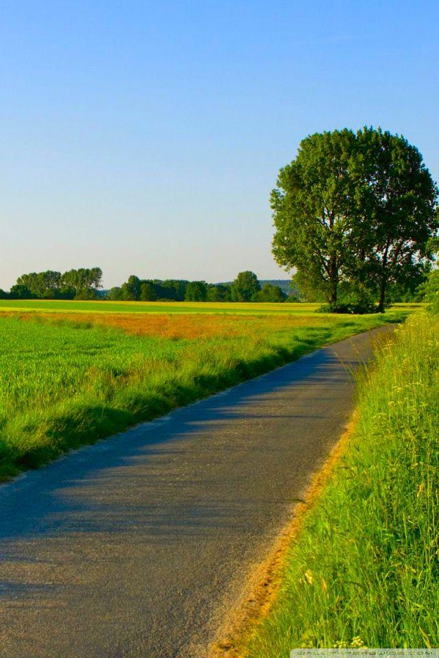 【640x1136】緑豊かな自然・風景【iPhone5用高画質待ち受け壁紙