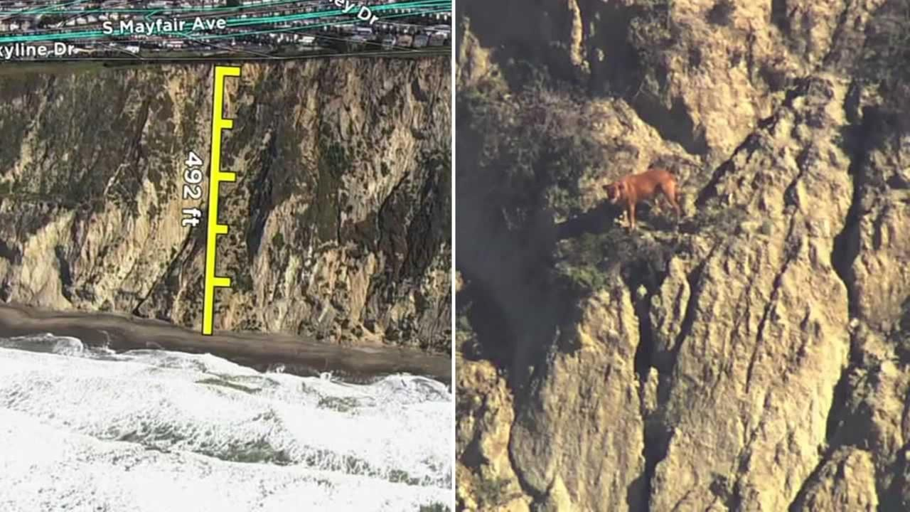Dog owner falls from 500foot cliff dies trying to rescue