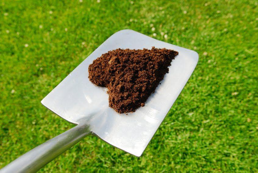 Cómo preparar la tierra ideal para tus cultivos en casa l EcoHortum