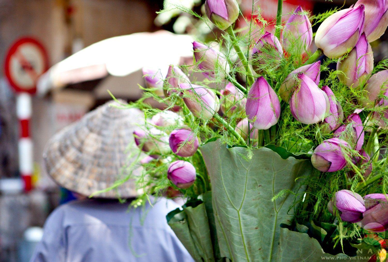 Vietnam In Beeld Pho Vietnam Vietnamese Pinterest Pho
