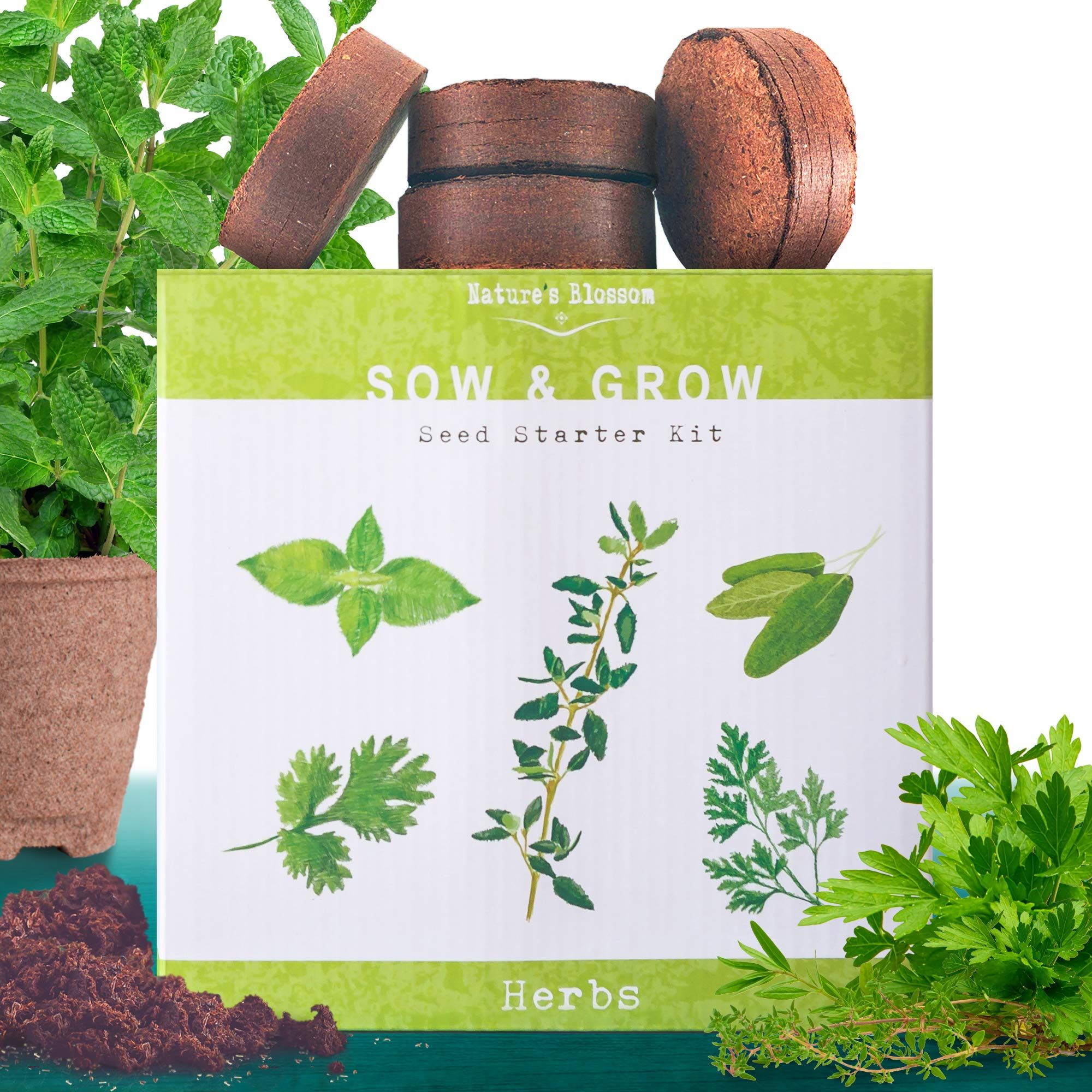 Nature's Blossom Indoor Herb Garden Starter Kit with 5