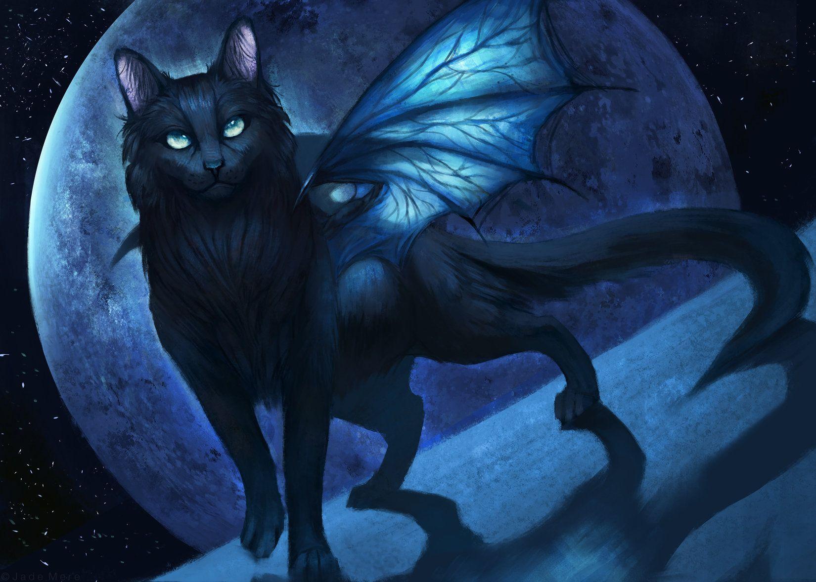 Картинки фэнтези кот