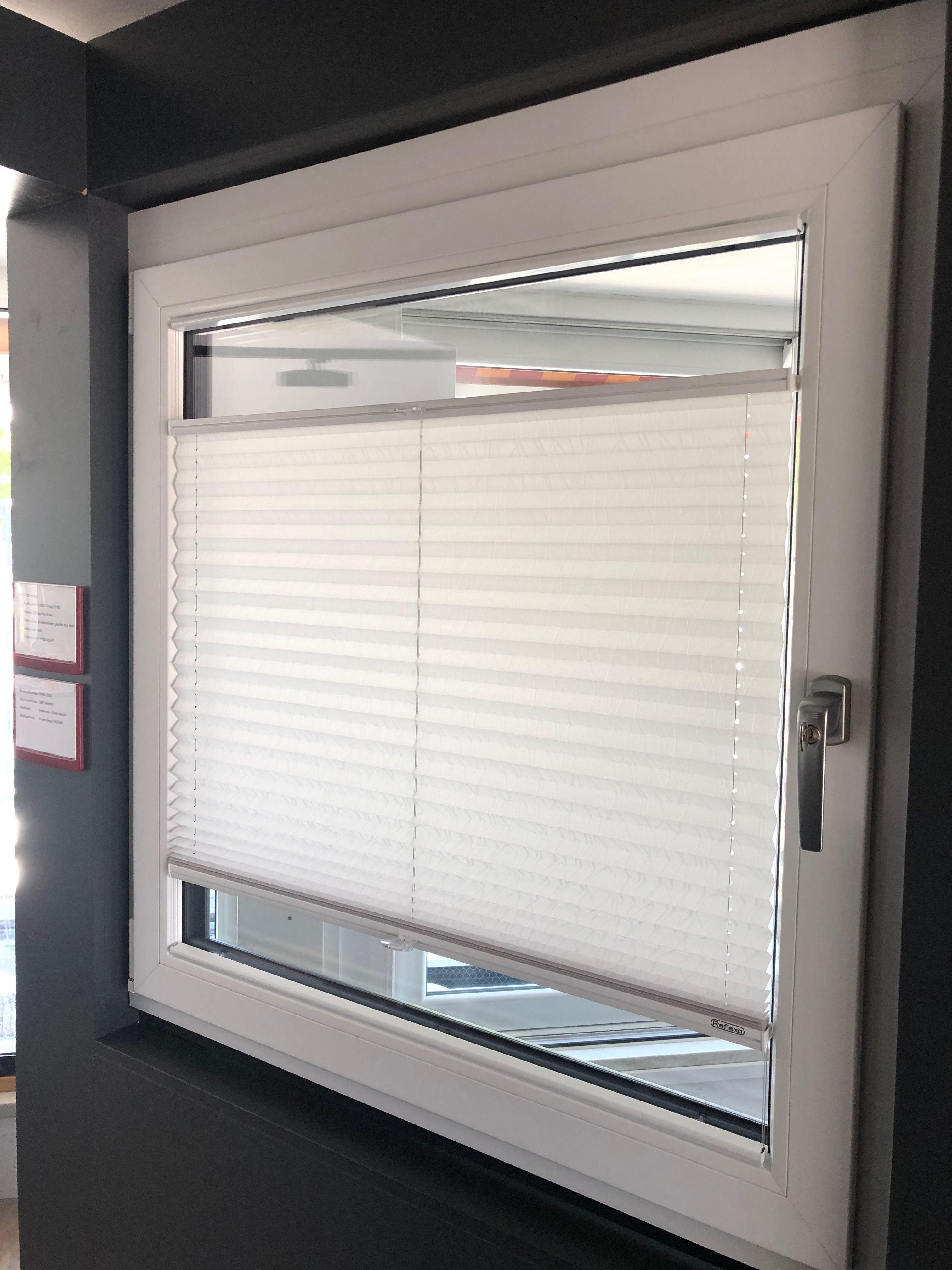 Plissee Als Sichtschutz Lieferant Reflexa Sichtschutz Als Lieferant Plissee Reflexa Sichtschutz In 2020 Fenster Plissee Sichtschutz Fenster Sichtschutz