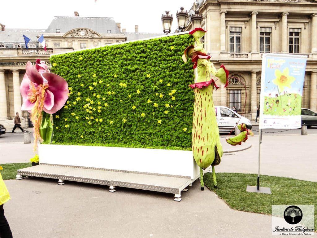 Creation Mur Vegetal Exterieur mur fleuri 10000 jonquilles en plein cœur de paris ! | plant