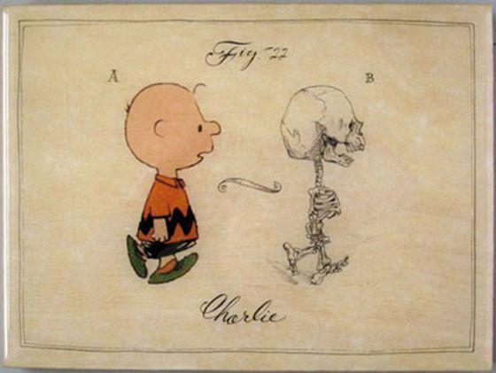 Charlie Brown Charlie Brown Skeleton Drawings Skeletal System