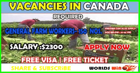 Vacancy For Farm in Canada | Job Offers worldwide | Farming