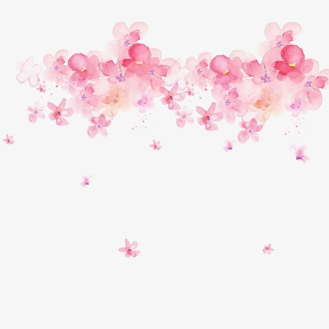 Pink Watercolor Flowers Pink Watercolor Flowers Png Transparent Clipart Image And Psd File For Free Download Watercolor Flowers Tutorial Pink Watercolor Flower Watercolor Flowers