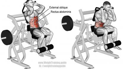 machine leg raise crunch exercise  ejercicios de