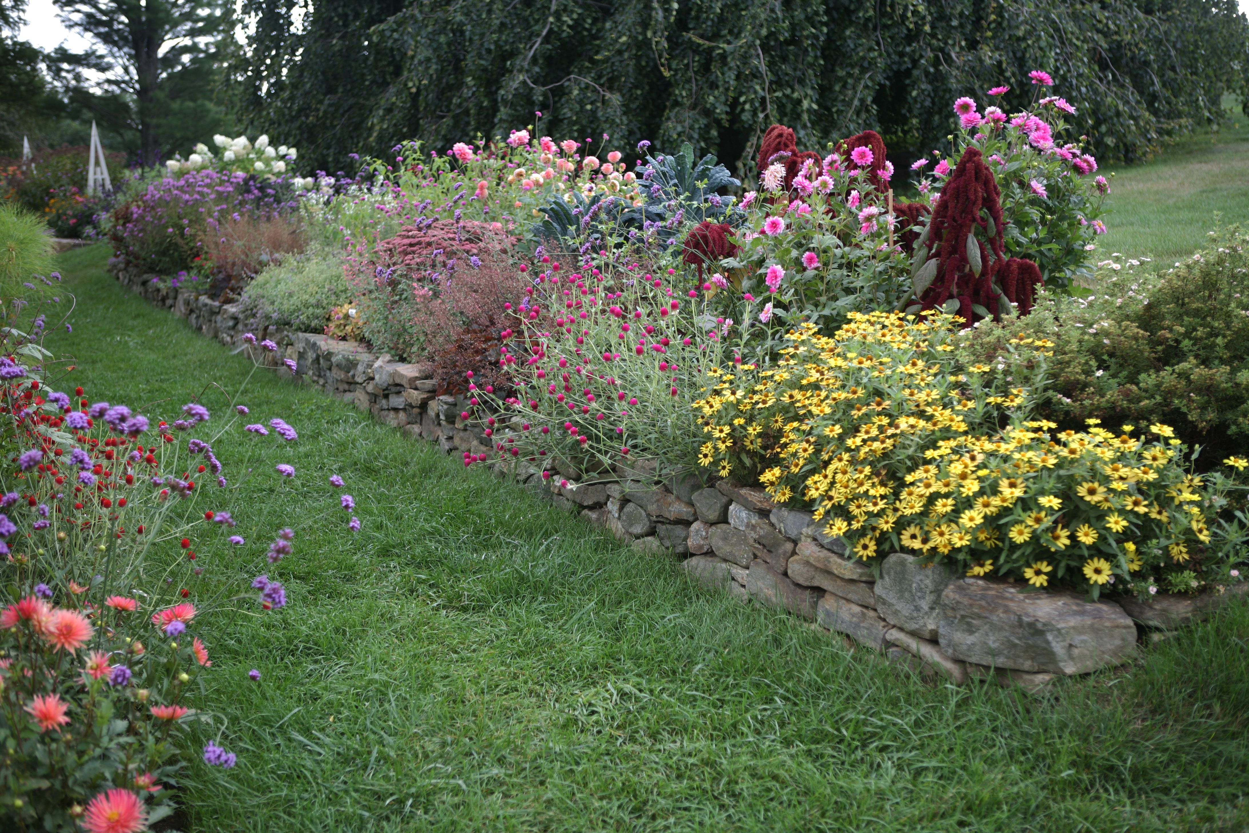 Flower borders 10 essential tips from white flower farms barb flower borders 10 essential tips from white flower farms barb pierson mightylinksfo Gallery