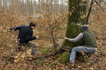 formation garde forestier