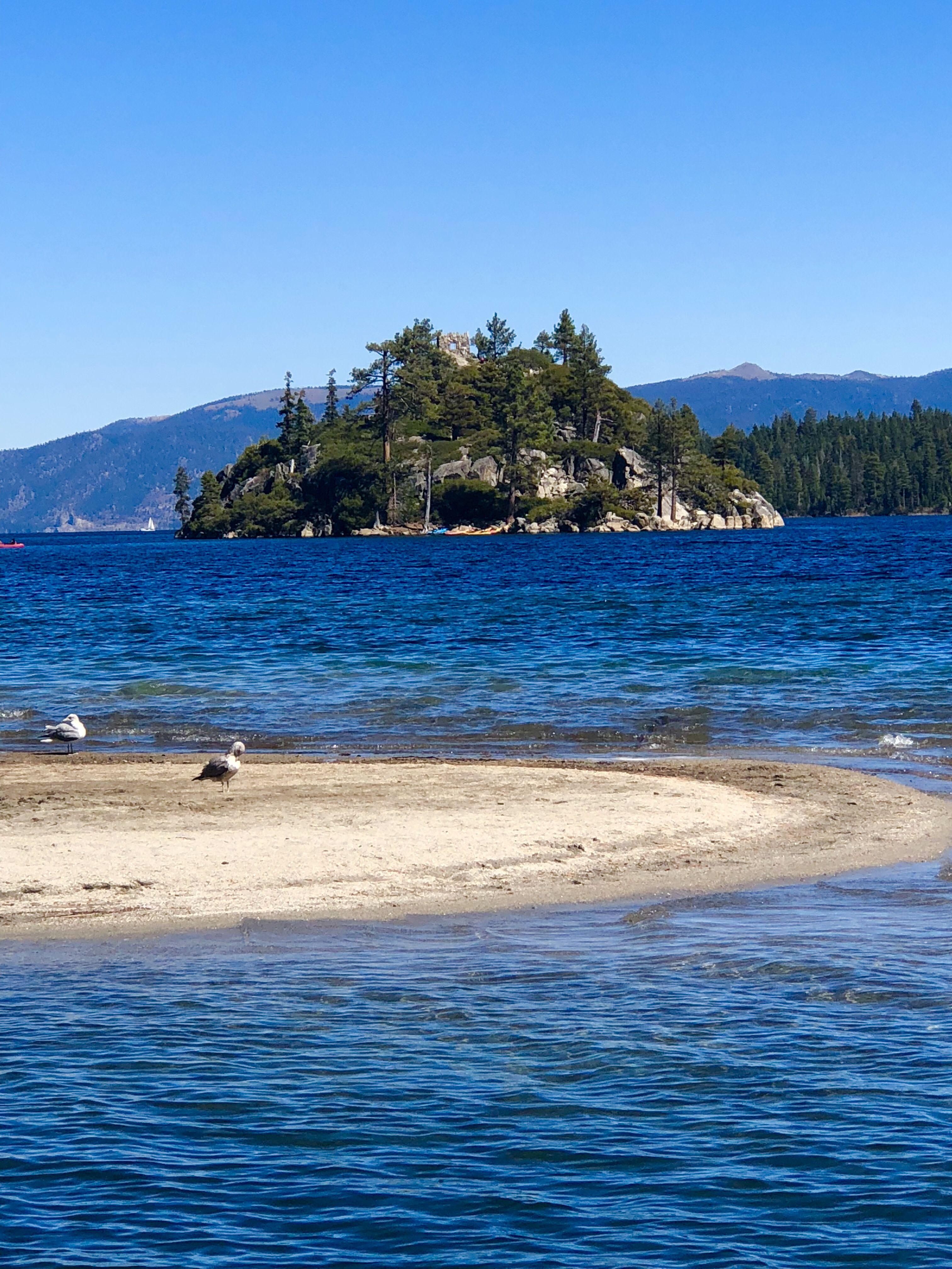 Emerald Bay in Lake Tahoe Dog friendly vacation, Lake