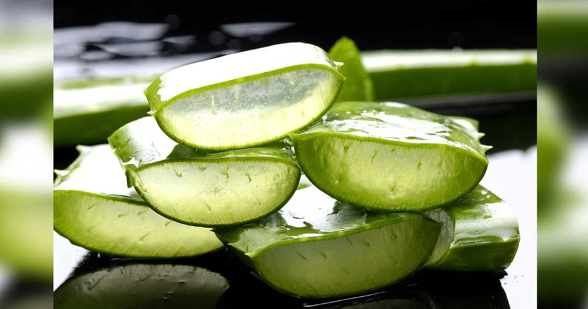 Aloe Vera Yogurt Tattoo Removal: Aloe Vera Isn't Just For Your Skin. Here Are 6 Other Ways