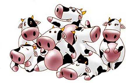 Pictures Of Cartoon Cows - ClipArt Best