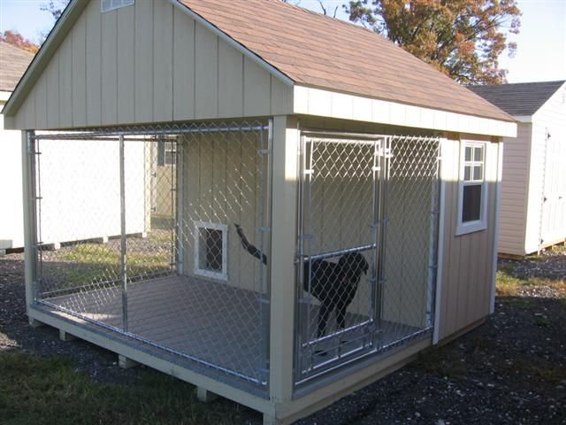 Kennels best built sheds for the dogs and cats for Indoor outdoor dog kennel design