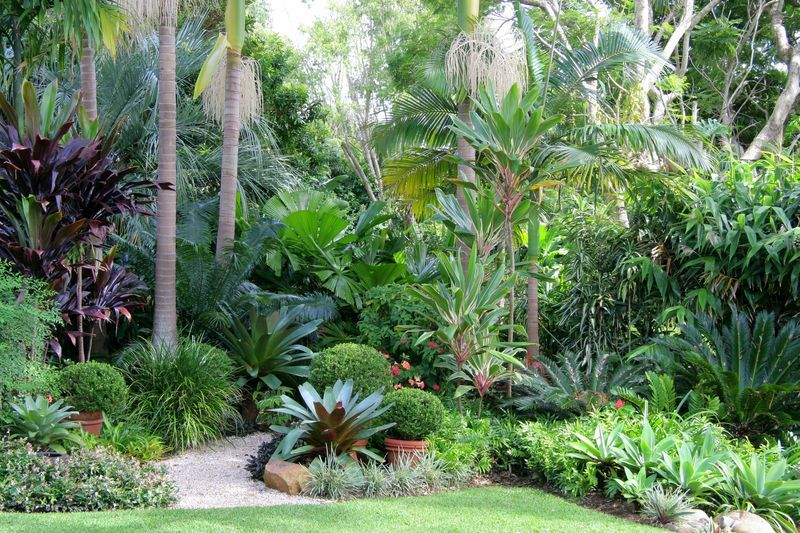 Nevell Garden Coffs Harbour Garden Expressions Landscape Design For Residential Tropical Landscape Design Tropical Garden Design Garden Landscape Design