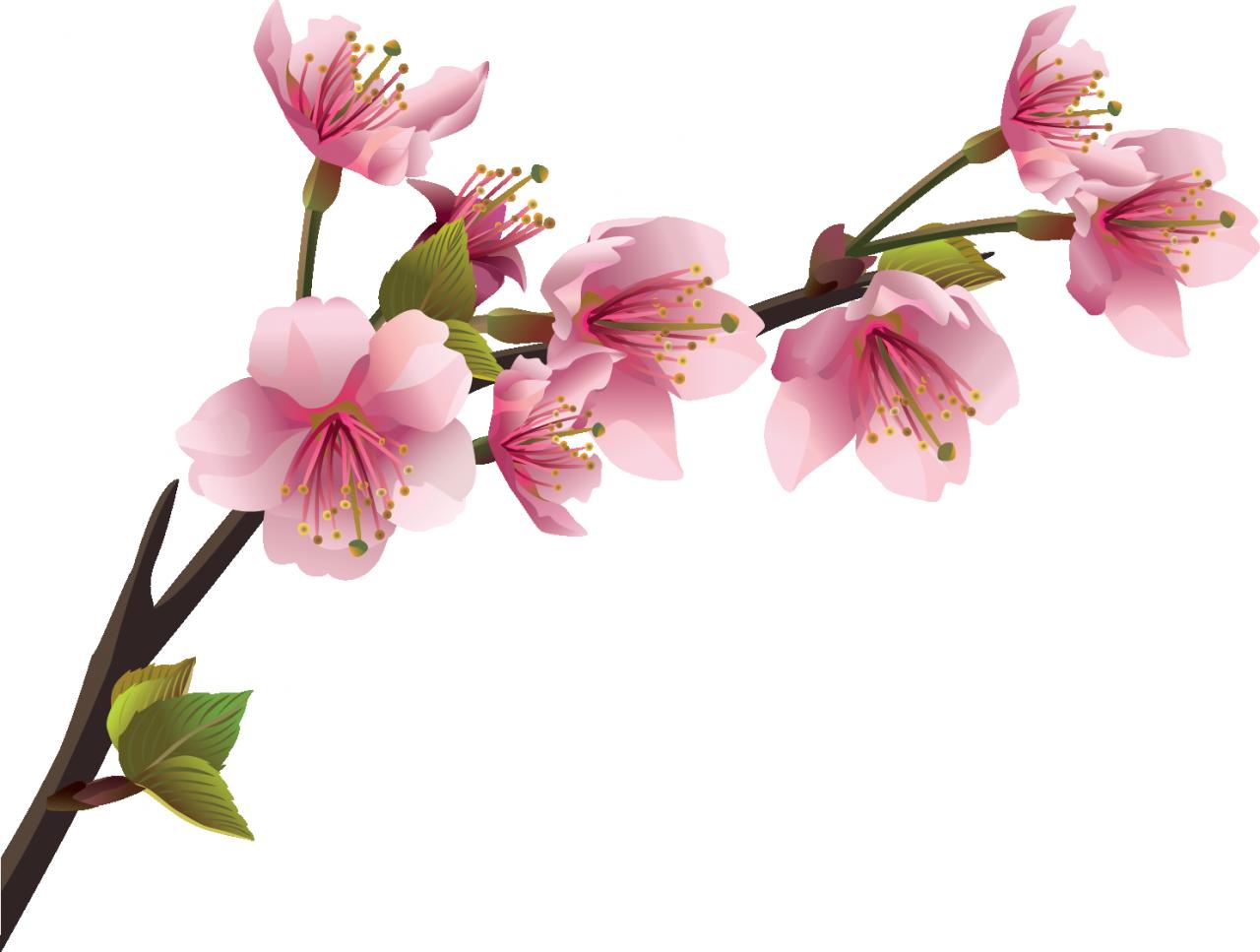 картинка веточки цветка крупные млекопитающие