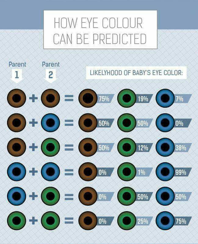 Heterochromia Eye Prediction B Pinterest