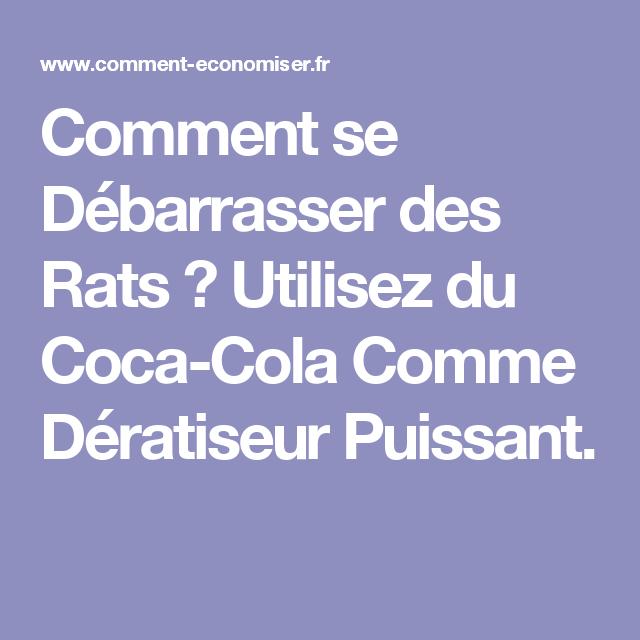 comment se débarrasser des rats ? utilisez du coca-cola comme