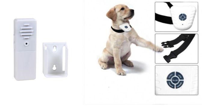 collier pour chien ultrason