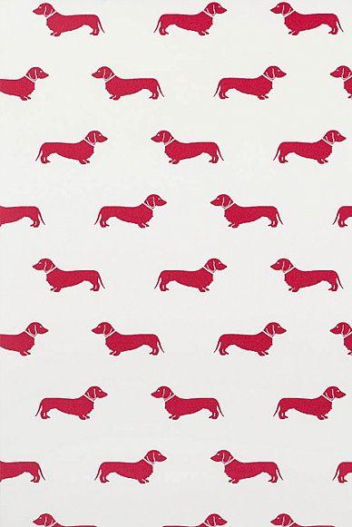 Red Dachshund Wallpaper at Emily Bond UK Dachshund