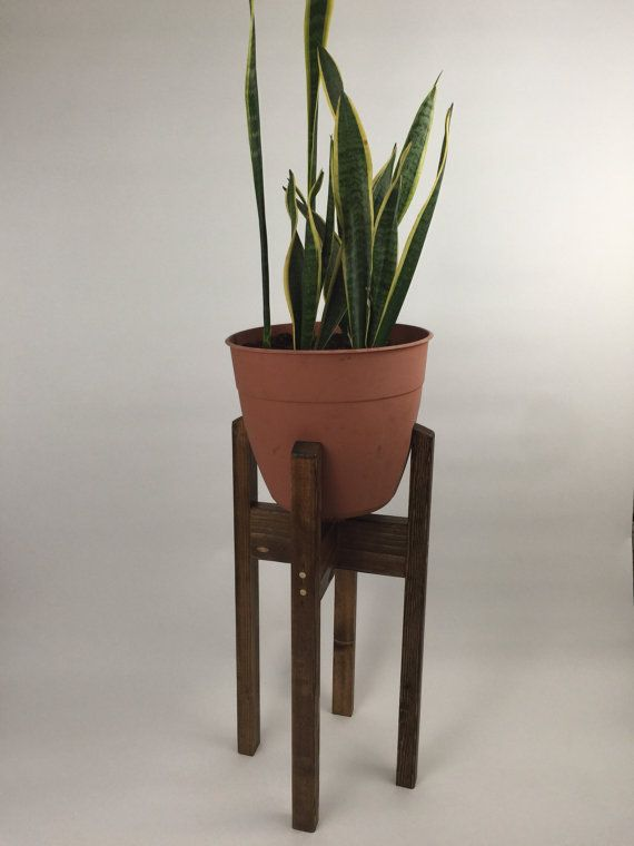 This is our lovely hand made medium Modern Plant Stand. It has a classic mid-century design and stands 24 high. It holds up to a 10 pot (not included). These affordable plant stands are great individually, or in groups for different heights. See our other listings for tall and shorter styles. Convo for other finishes/sizes/multiple shipments. PLANTS AND POTS NOT INCLUDED.