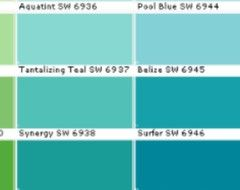 Sherwin Williams Synergy And Surfer