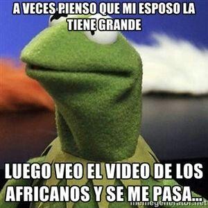 A Veces Pienso Que Mi Esposo La Tiene Grande Memes Divertidos Rana Rene Memes Chistosos En Espanol