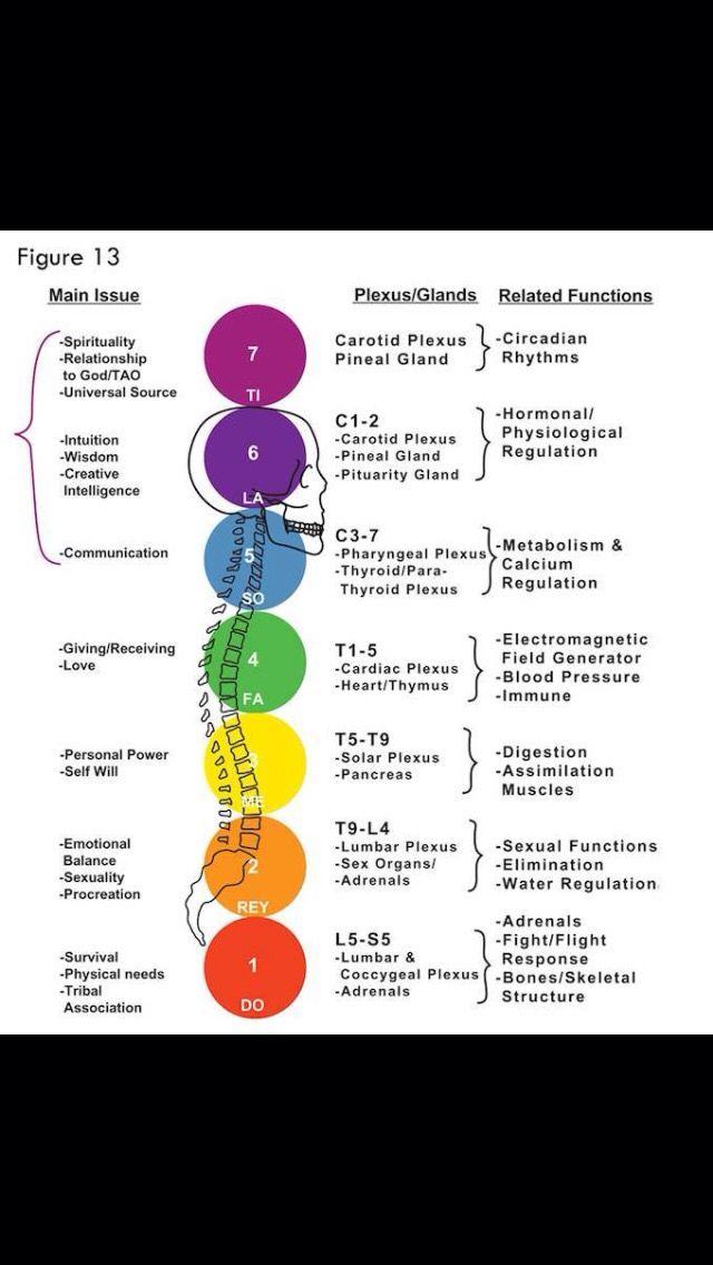 Chakra body chart chakra pinterest chakra body chart ccuart Images