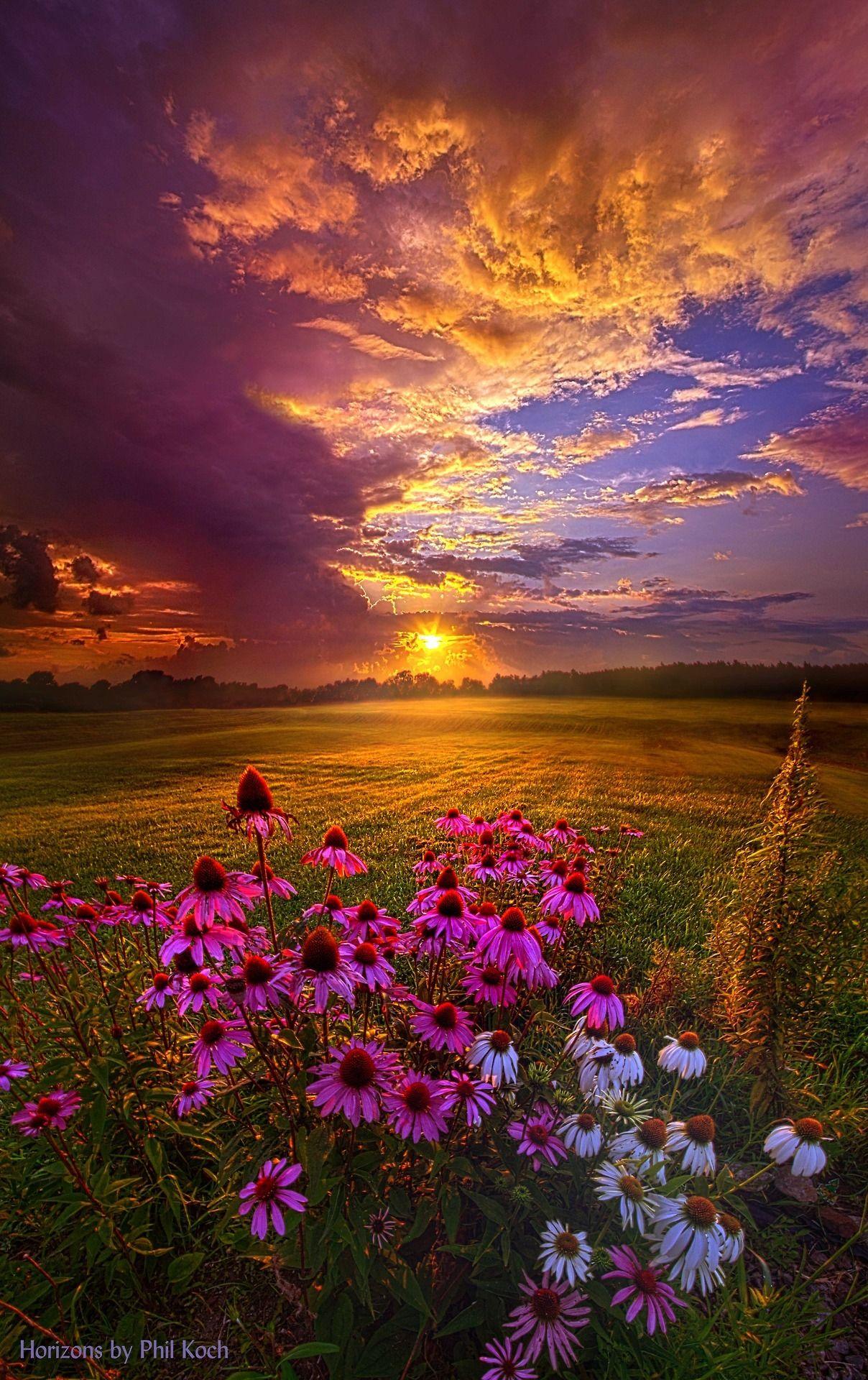 Photos de la création de Dieu et textes qui vous donneront envie de Le louer...    25f62aa125a1cebf4180c0f5fd0c482a