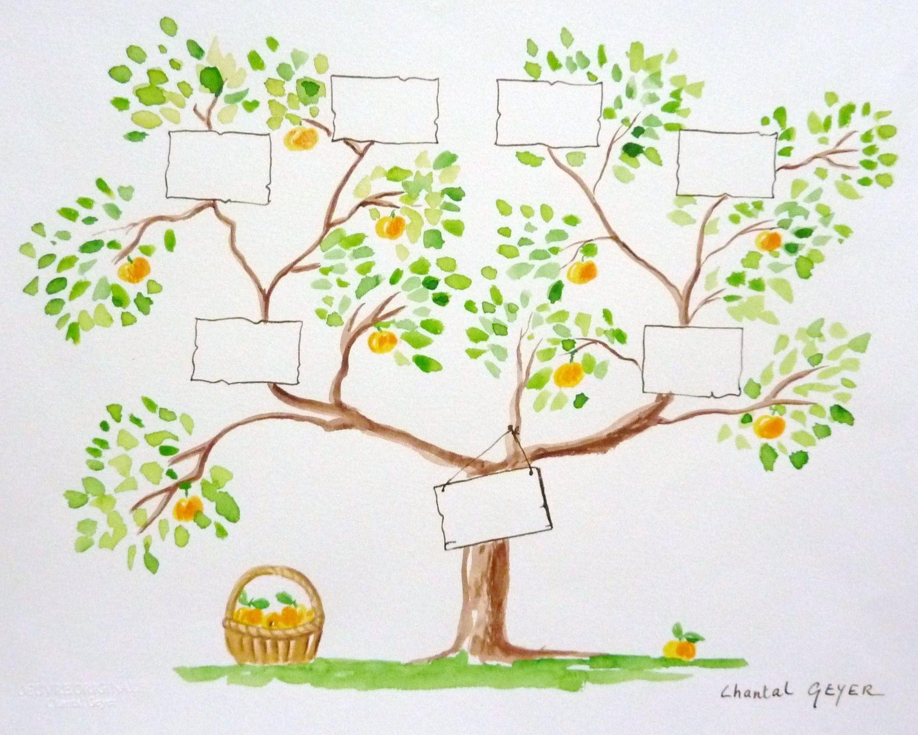 Arbre g n alogique remplir 3 g n rations ascendantes caroubiers pinterest arbres - Arbre genealogique dessin ...